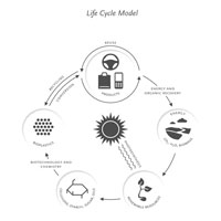 lifecycle sm